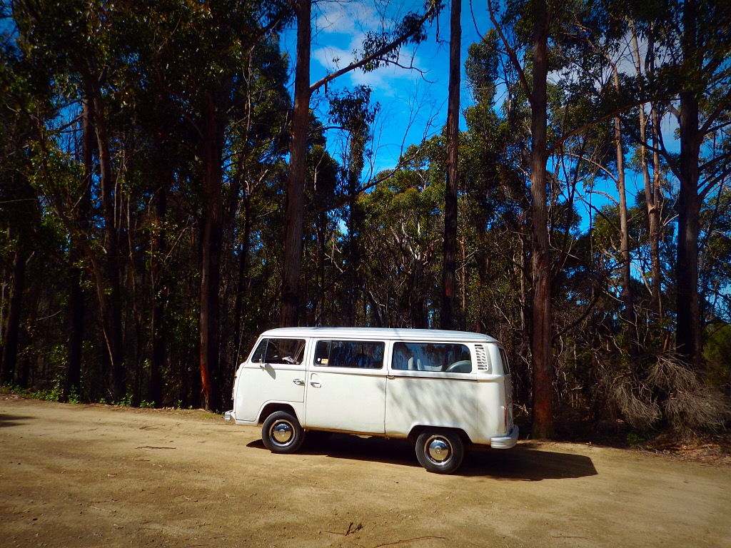 Road trip van parked in forest trail